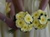 Weddings at Riviera Hotel Bournemouth Wedding Venue